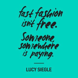 FRD_quote_lucy_siegle