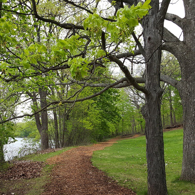 Down-by-the-foxriver-today-during-the-open-house-at-therefuge-in-appleton-wi-things-are-happening-round-here_17720589006_o