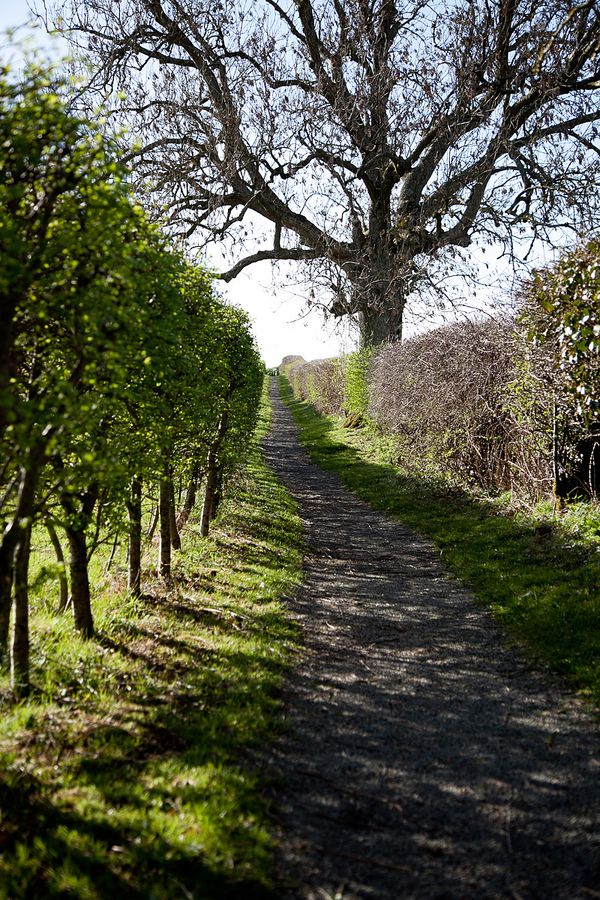 Country paths