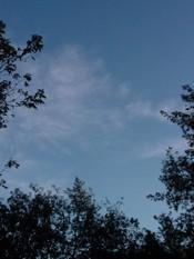 Sky_10504